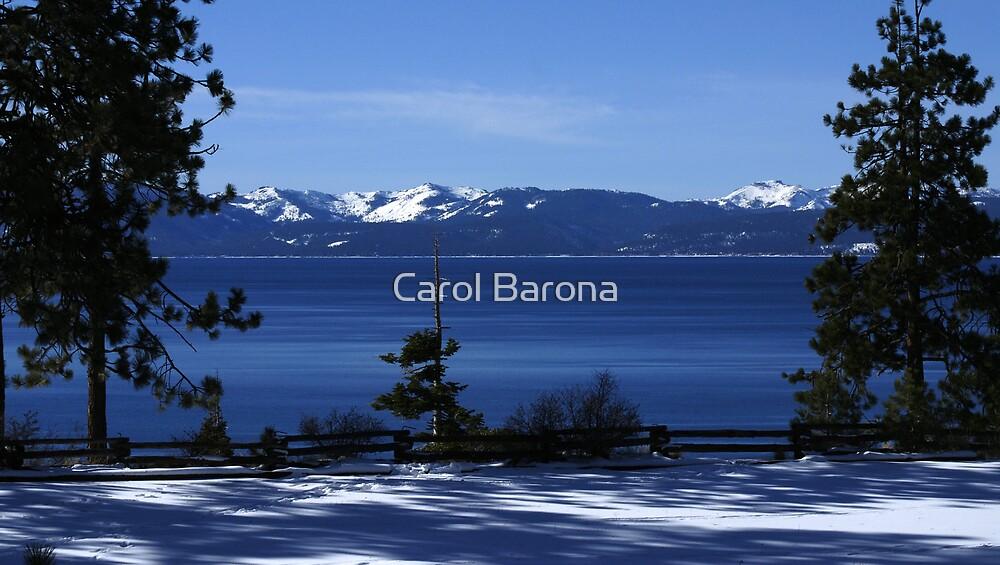Between The Pines by Carol Barona
