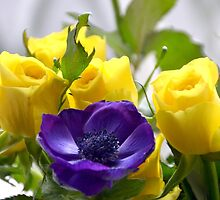 Yellow Roses and Purple Anemones......... by lynn carter