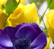 Yellow Roses and Purple Anemones......... Sticker