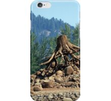 Another wonder of Lost creek lake iPhone Case/Skin