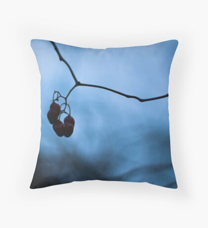 Shadowplay Throw Pillow