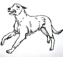 Irish Wolfhound by William Southers