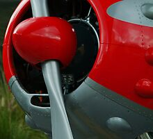 Red Baron by harborhouse55