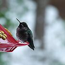 Hummer in Winter by George Cousins