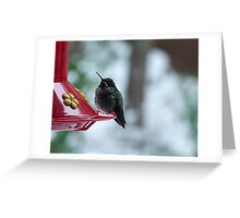 Hummer in Winter Greeting Card
