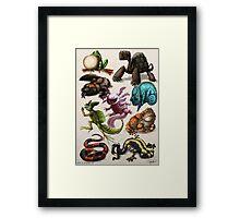 Reptiles & Amphibians Framed Print
