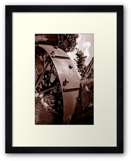 Spoken Wheel in Stump by Dan Sweeney