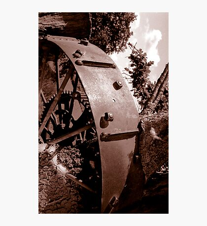 Spoken Wheel in Stump Photographic Print