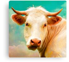 """Alfonso  - The Italian Steer"" Canvas Print"