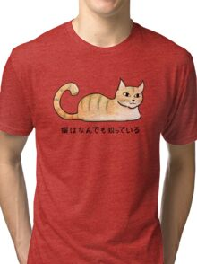 Cats Know Everything - Japanese Tri-blend T-Shirt