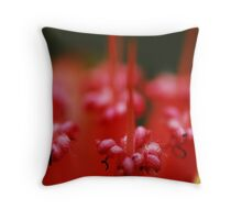 Insect Bar Throw Pillow
