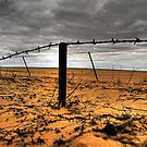 Drought Breakers? by Steve Chapple