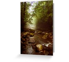 Mist Whispers Greeting Card