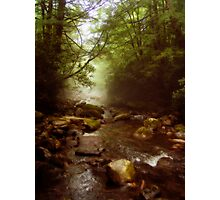 Mist Whispers Photographic Print