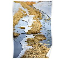 Cherry Creek Snow Melt  Poster