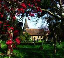 Byfleet Churchyard by Colin  Williams Photography