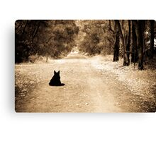 Waiting for his master Canvas Print
