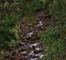 Stony Creek at Halls Gap - Grampians V02 by Jennifer Craker