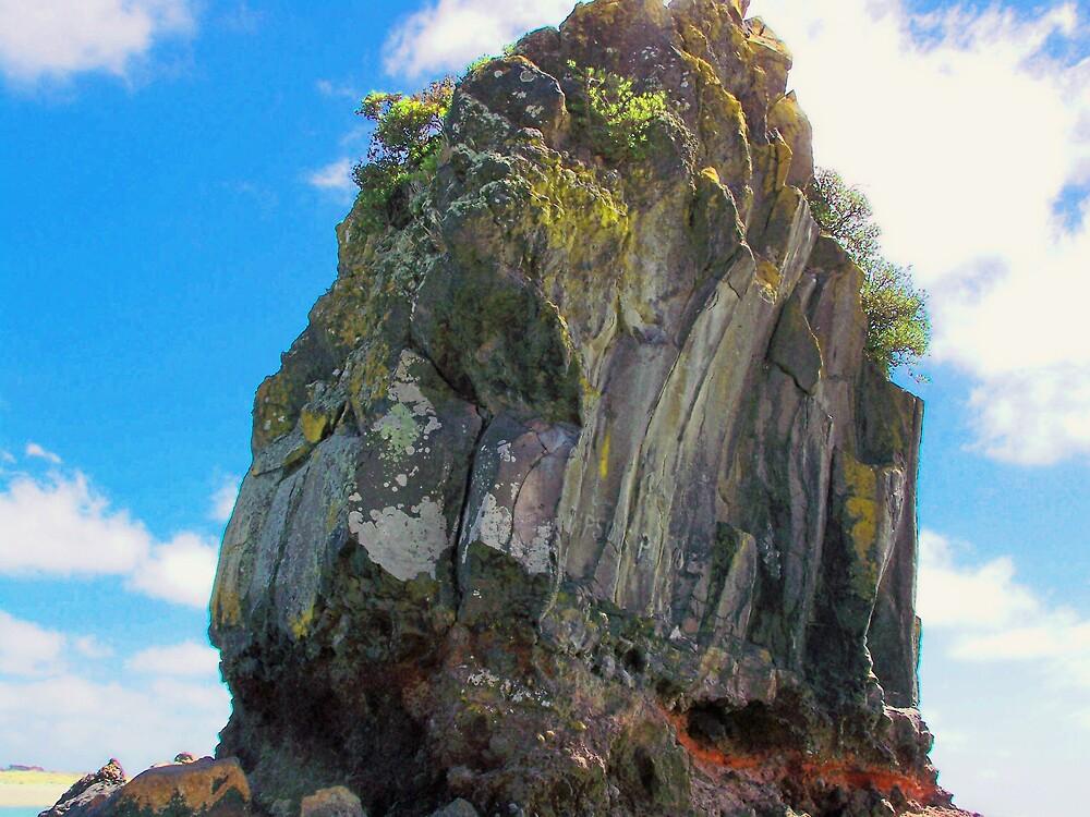 Shag Rock by rosswilliams