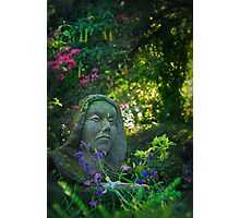 Have You Listened To Nature Lately? Photographic Print