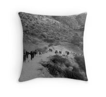 Road to the Pilgrimage - 2 Throw Pillow