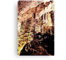 grutas de garcia 8 Canvas Print