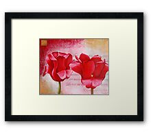 Two Tulips Framed Print