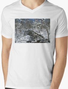 Bridal Veil Mens V-Neck T-Shirt