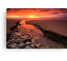 There's Gold in That There River Canvas Print