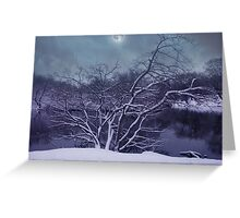 Midnight Solstice Greeting Card