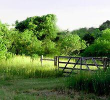 Green Gateway by RollemFloyd