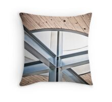 Linear Equations Throw Pillow