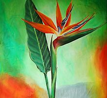 Acrylic- Bird of Paradise by Tiffany Budd