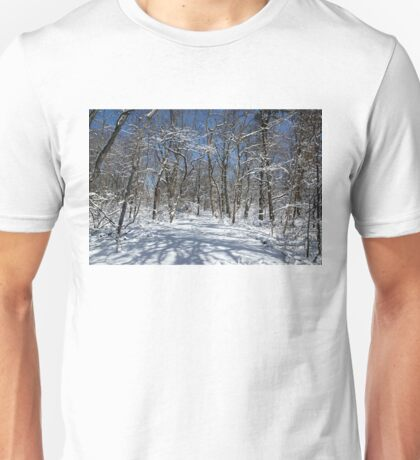 Winter Road Unisex T-Shirt