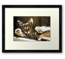 The Right Hook Framed Print