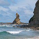 Eagle Rock, Bururong Marine Park, Inverloch, Victoria. by johnrf