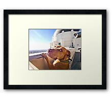 Ray at the Observatory Framed Print