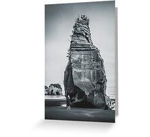 NEW ZEALAND:ELEPHANT ROCK Greeting Card