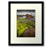 NEW ZEALAND:MOSS GLOWING Framed Print