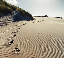 NEW ZEALAND:FOOTSTEPS IN THE SAND by philaphoto