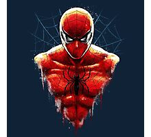 Spider-Man Bust Photographic Print