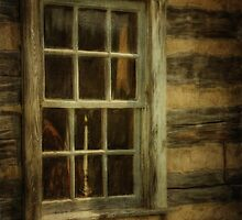 Window To The Past by Lois  Bryan