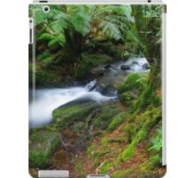 Cement Creek. iPad Case/Skin