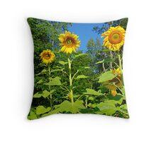 A Sunflower family Throw Pillow