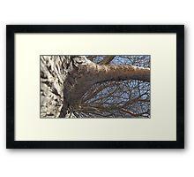 Blue Skies 006 Framed Print