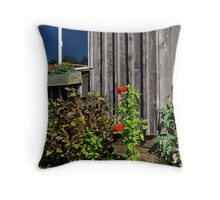 Window and red flowers Throw Pillow