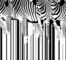 zebra barcode Sticker