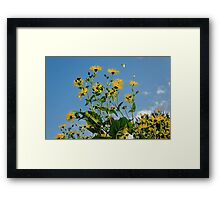 Spring Is In The Air #2, Oxford, England Framed Print