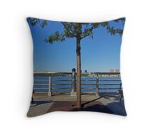 Two benches and a tree Throw Pillow