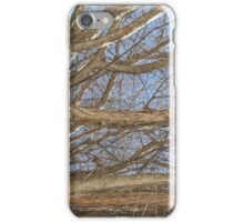 Blue Skies 008 iPhone Case/Skin